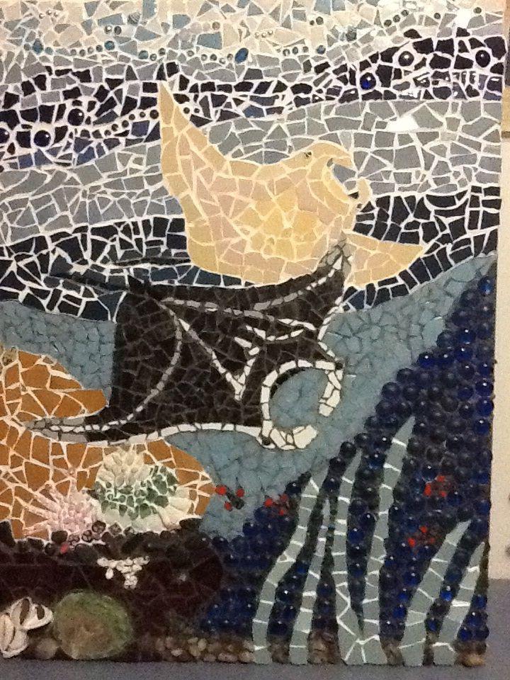 Manta rays sept 2013