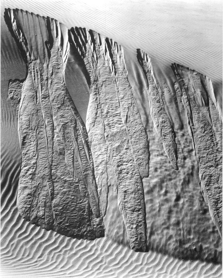 Edward Weston, Dunes, 1934