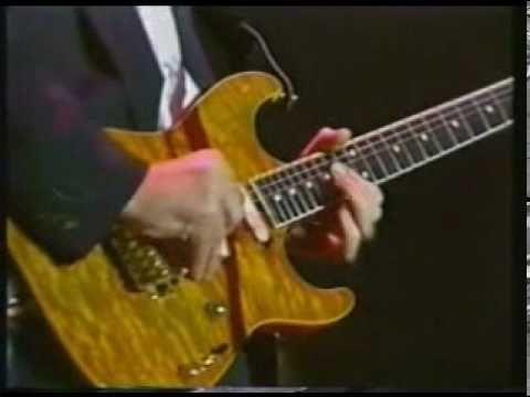 Esta genial cancion, interpretada por Eric Clapton, Paul McCartney, Billy Preston, Andy Fairweather-low, y muchos mas, en este concierto dedicado al gran Geo...
