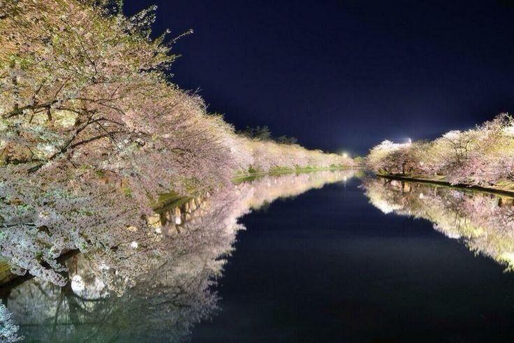 これぞ!日本一と呼ばれる青森県弘前市の弘前桜祭り!!! http://twitter.com/miimiimii_333/status/452087892983021568/photo/1
