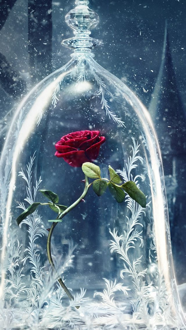 Beauty And The Beast Castle Icy Bell Rose Snowflake #iPhone #5s #wallpaper