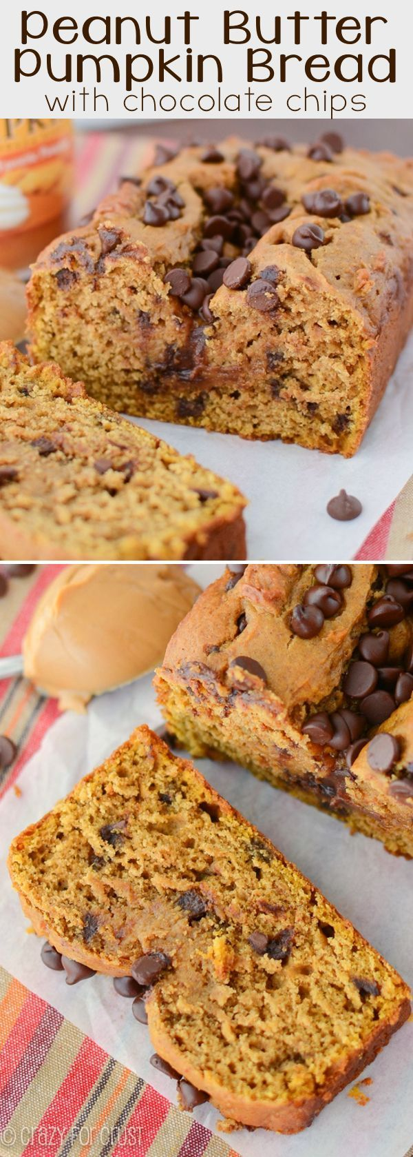 Peanut Butter Pumpkin Bread - this recipe is fabulous! The combination is insanely good, especially with chocolate chips.
