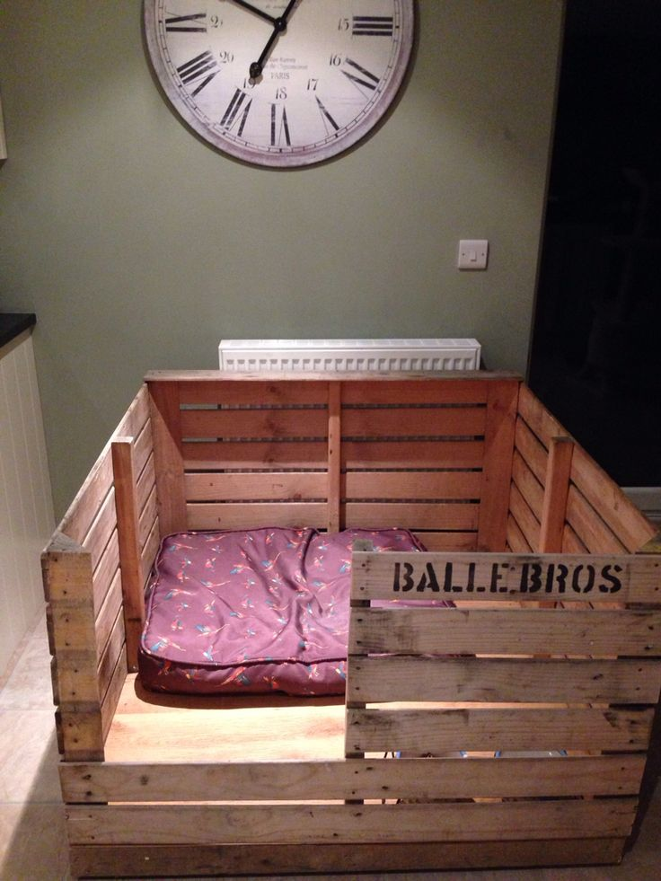 Puppy Whelping box #puppies #whippets #whelping