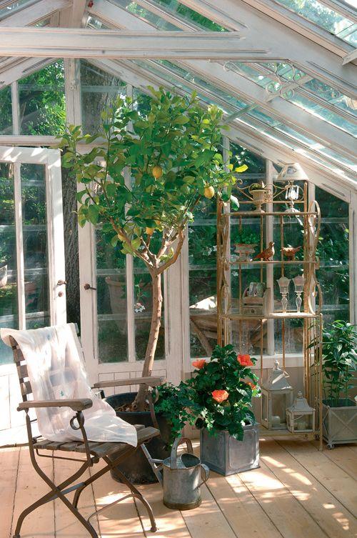 Chic Anglais - Inspirée des jardins d'hiver anglais, cette véranda, entre…
