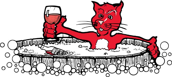 RED CAT. Just drink it.  Everyone does... the social wine. It's cheap, on the sweet side... think Pizza, wings, and the wine flu.