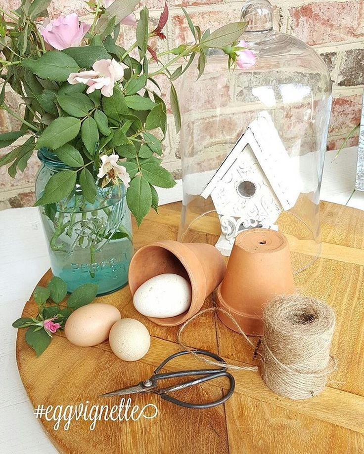 "57 Likes, 3 Comments - Penny/Happy Days Farm® (@happydaysfarm) on Instagram: ""Happy Thursday y'all! . Each Thursday through Sunday, I host a tag called #eggvignette. If you have…"""
