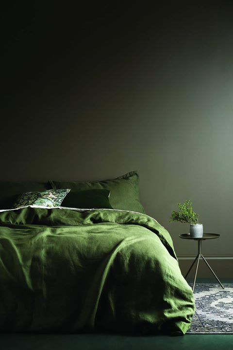 Best 25 forest green bedrooms ideas on pinterest forest for Dark forest green paint