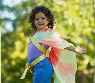 Výsledek obrázku pro sarah's silks wings