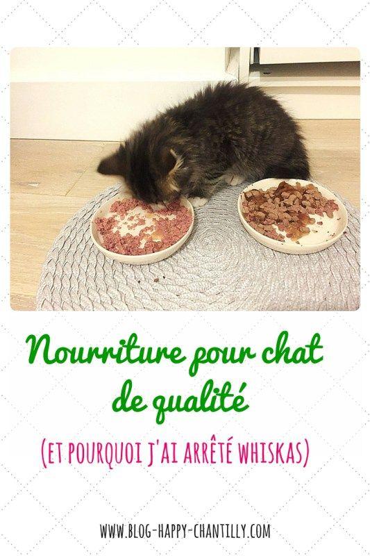 Nourriture pour chat de qualité (et pourquoi j'ai arrêté whiskas