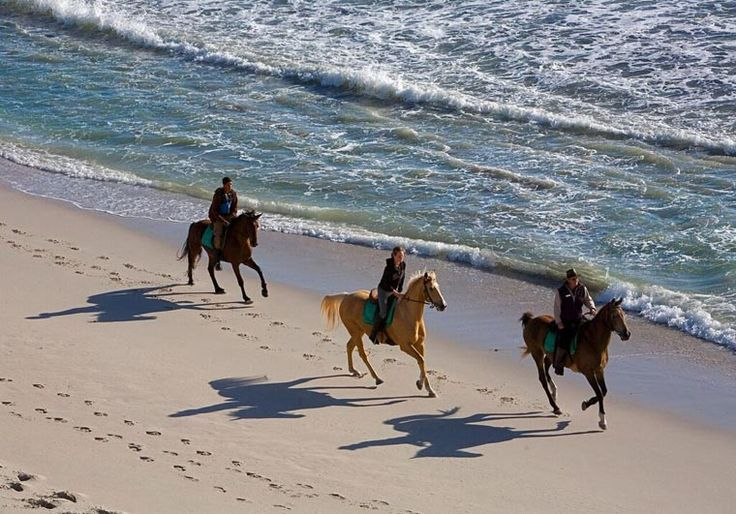 Beach horse riding available at Grootbos Lodge. This itinerary combines #romance and #adventure and is ideal for couples looking plenty of outdoor activities and luxury accommodation near Hermanus. #honeymoon #romance #luxurytravel