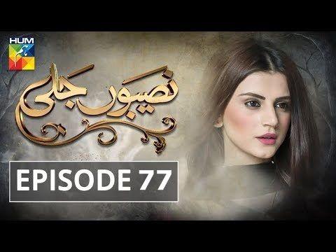 Naseebon Jali Episode 77 in HD   Hum Tv Dramas Online