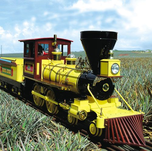 Pineapple Express Train at Dole Plantation, Oahu, Hawaii >>> How cute is this? Has anyone ridden on this?