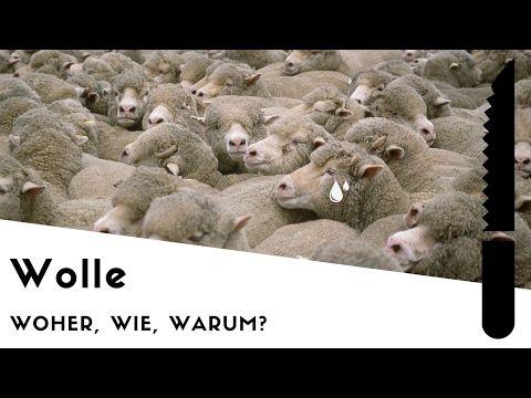 Woher deine Wolle kommt - YouTube