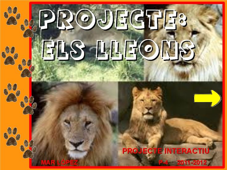 Projecte lleons