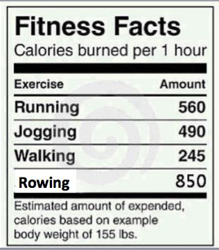 calories burnt rowing machine