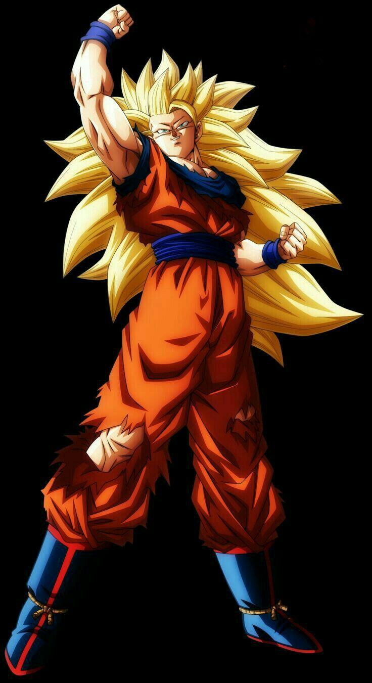 Goku Ssj 3. I don't typically dig the SSj3 look but this isn't half bad.