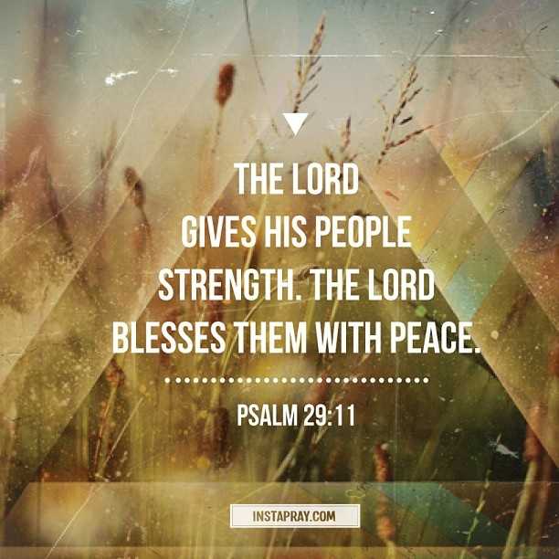 Psalm 29:11 - The Lord will give strength to His people; the Lord will bless His people with peace.