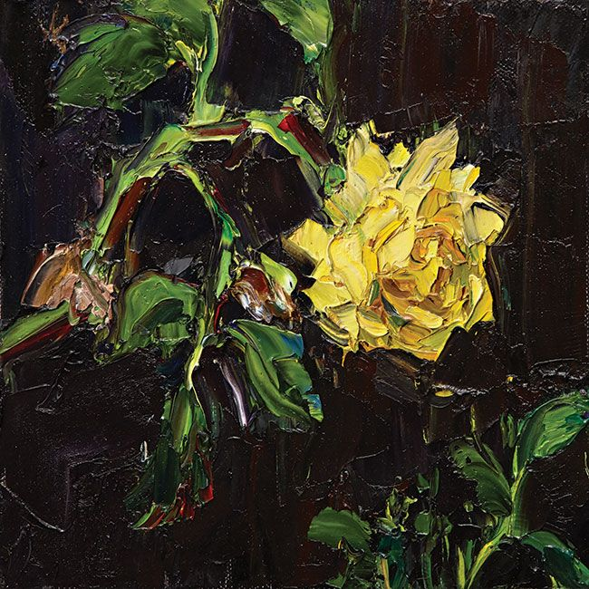 © Nicholas Harding ~ Shadow Rose ~ 2014 oil on canvas at Olsen Irwin Gallery Sydney Australia
