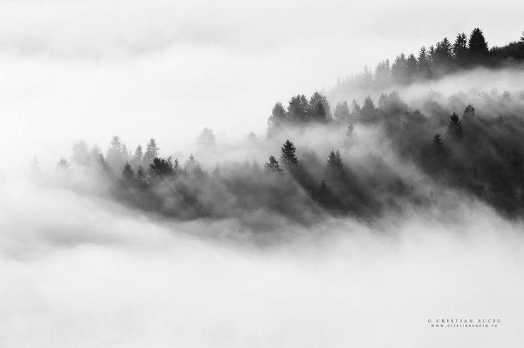 Harghita County, România.  Photo: © Suciu Cristian