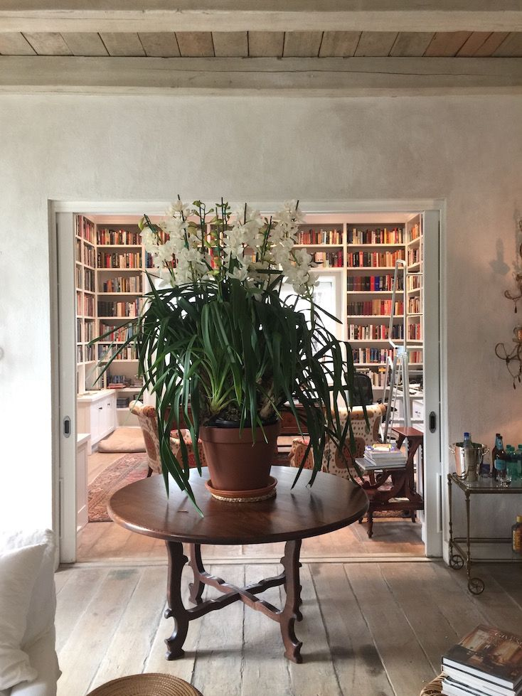 love the floors, ceiling, orchid, bookcases...Fern Close – Cape Town   Serena Crawford