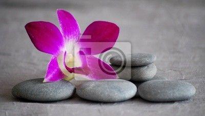 Canvas of Poster fuchsia roze orchidee bloem en kiezel