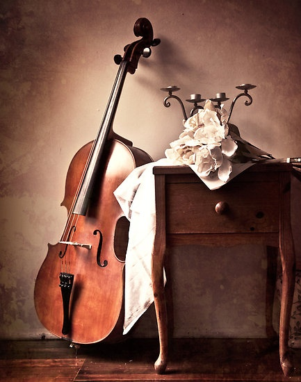 What a lovely still life... from Trish O'Brien, just fiddling around...
