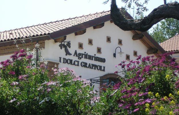 Weekend in agriturismo a Larino, tra filari e calici di buon vino   Molisiamo