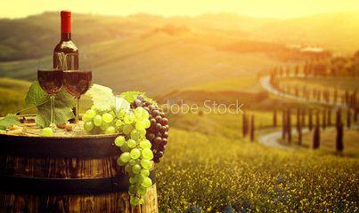 Красное вино с баррель виноградника в зеленом Тоскана, Италия
