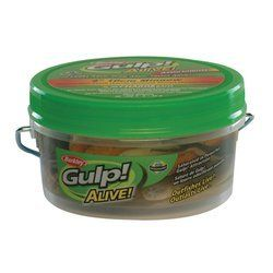 "Berkley Gulp! Alive! Jumbo Leech/Minnow Assortment Bucket 12.7 Ounce, 5-Inch/3-Inch, Assortment by Berkley. $18.83. The Jumbo Leech and Minnow assortment has a natural presentation in action, scent and taste, Gulp! Alive! Bait absorbs up to 20% more fish attractant by weight, assorted colors match a variety of fishing conditions, ""recharge"" bait by placing used bait back in powerful Gulp! Alive! attractant. Save 99%!"