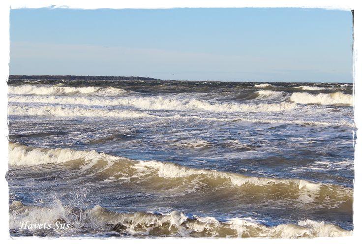 Havets Sus, Hundested, Denmark