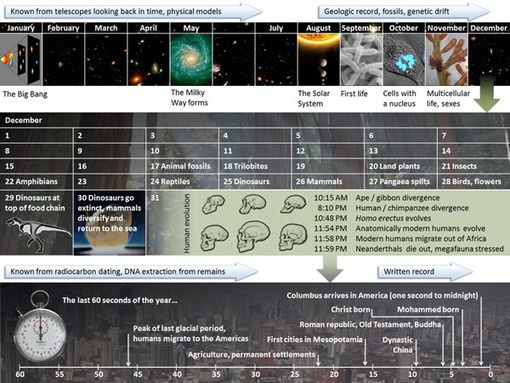 "The cosmic calendar and the race to ""Inner Space"""