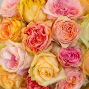 Luxe Boeketten | Leaf Bloemen | Capelle aan den IJssel :: Ecuador rozenboeket