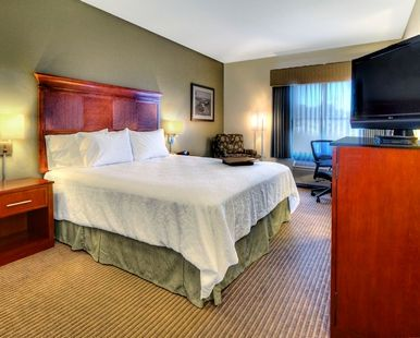 Hampton Inn Santa Cruz Hotel, CA - Standard King Room
