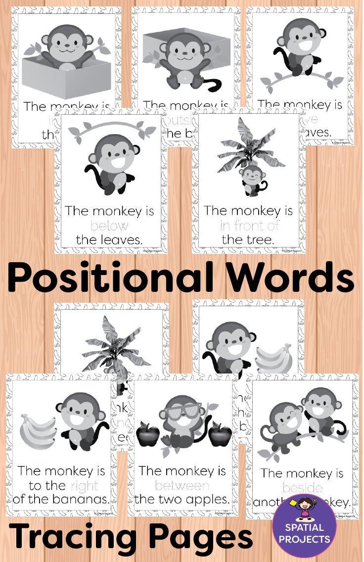 Positional Words Activities And Worksheets Word Activities Literacy Center Activity Positional Words Activities [ 1136 x 736 Pixel ]