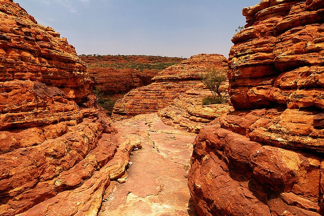 Kings Canyon, Watarrka National Park, NT Australia