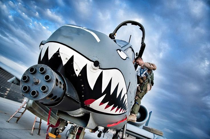 U.S. Air Force A-10 Thunderbolt II war face!