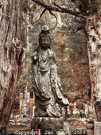 Koya-san Buddha 2009