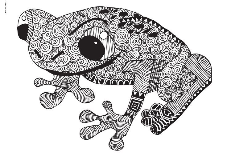 Zentangle Designed Frog Zentangles Mandalas And Coloring Pages Pinterest Frogs And Zentangle Zentangle Animals Frog Coloring Pages Frog Art