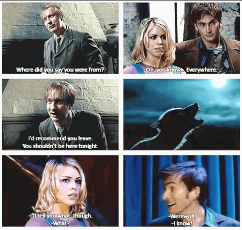 ANY AND ALL OF THESE DOCTOR WHO/HARRY POTTER MASH-UPS. | 34 Amazing Crossovers You Wish Were Real