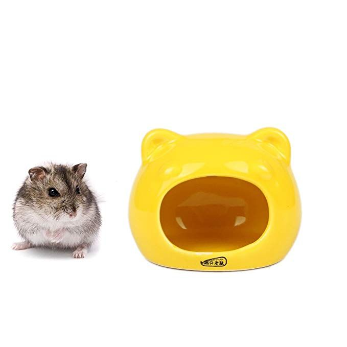 Amazonsmile Ceramic Hamster Bedding Hideout Nest Chinchilla