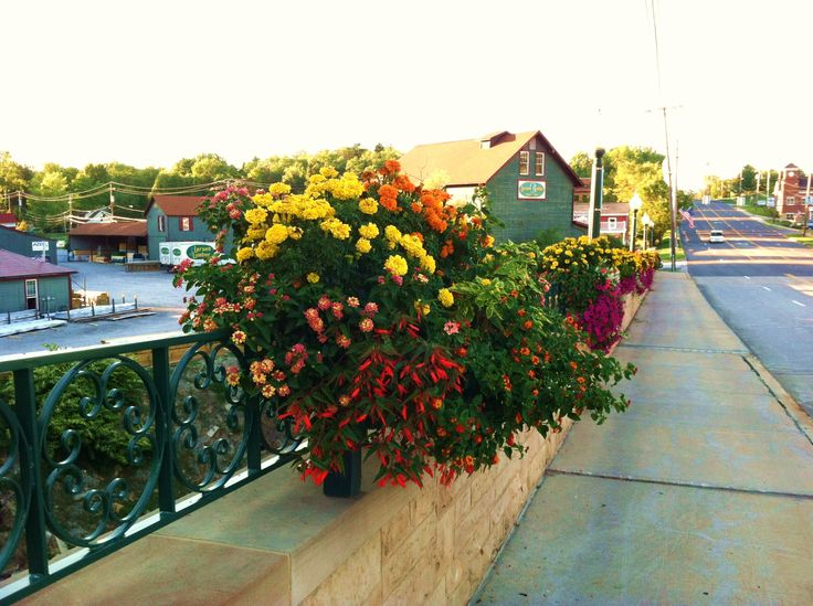 """Brecksville Ohio - Old Route 21 - Incredibly done """"Flower Bridge"""".  Photo taken by ParadeOfGardens.com!"""