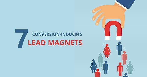 7 Conversion-Inducing Lead Magnets for Your E-commerce Store - OptiMonk Blog