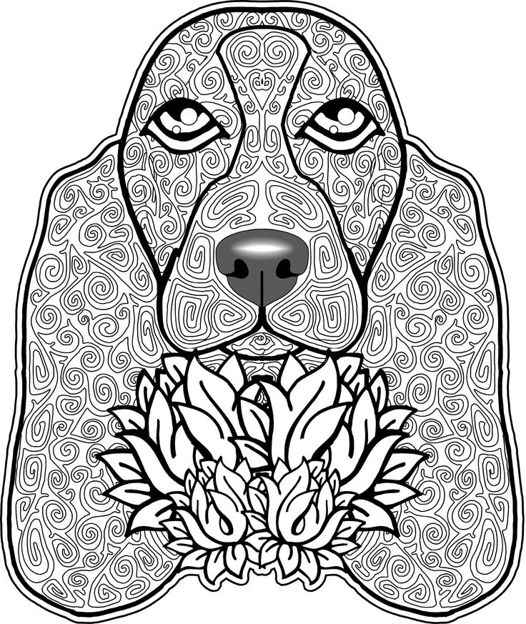 Dog Coloring Page Pages Free For Adults Basset Hound