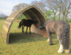 Horse Arc A Fantastic New Idea For A Mobile Field Shelter! No Planning  Permission,