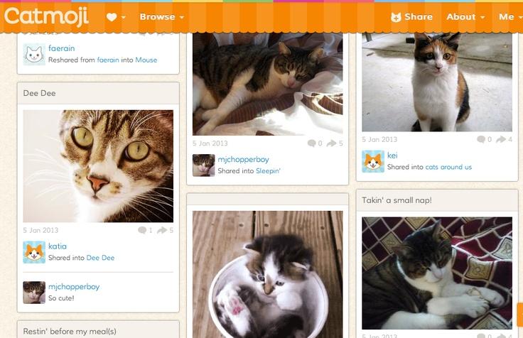 Catmoji, οι γάτες ανεξαρτητοποιούνται και αποκτούν το δικό τους Κοινωνικό Δίκτυο, από τη Μελπομένη Σιδέρη στο blog της   http://melpsid.blogspot.gr/2013/01/catmoji.html