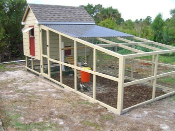 YES!!! Coop & Run 6ft x 8ft - BackYard Chickens Community