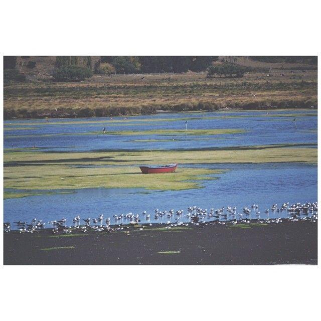 Red Boat. Caleta Lenga, Chile.
