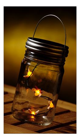 Fireflies in a jar... Centerpiece of tables.