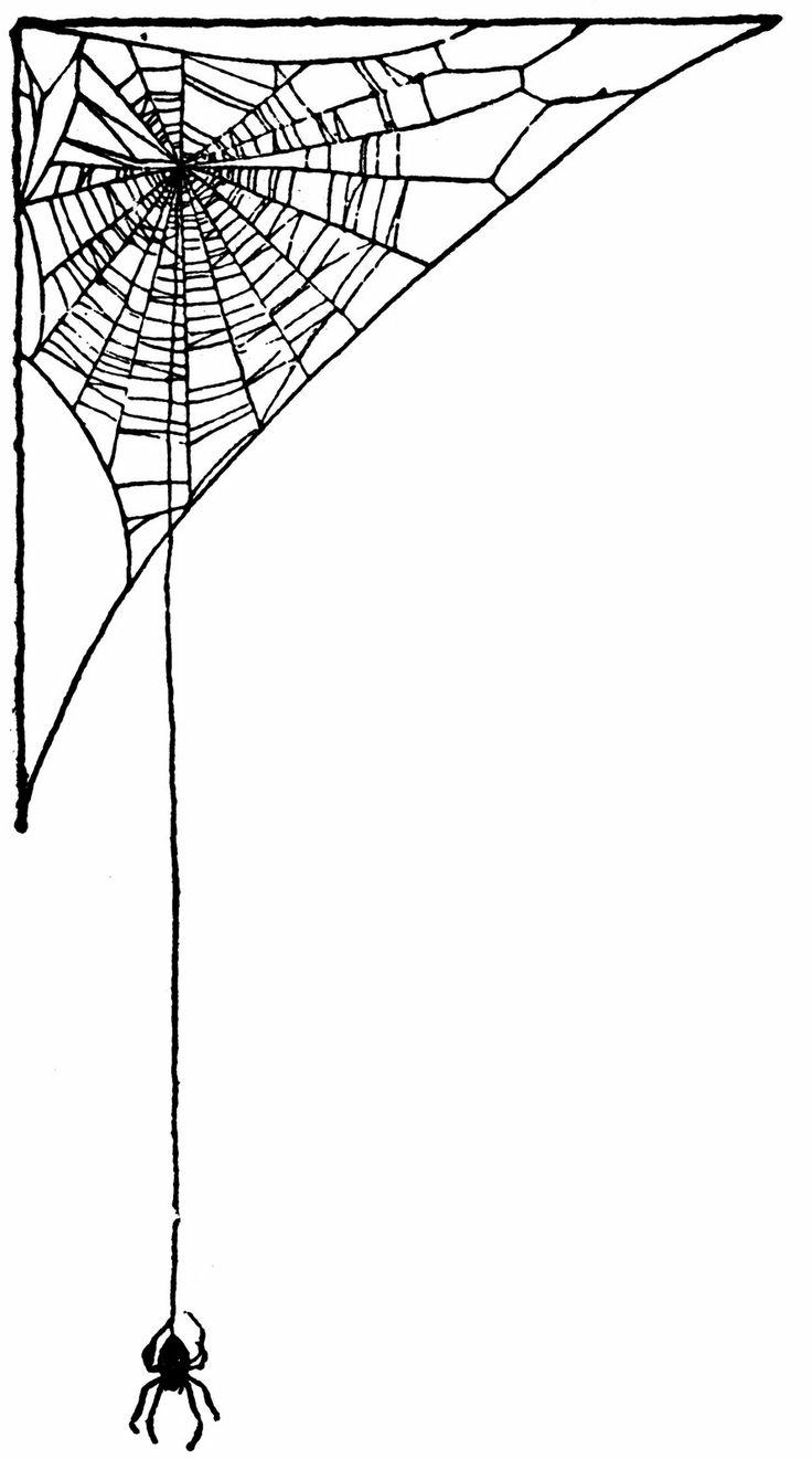 Vintage Ephemera: Children's book illustration, spider and web, 1919