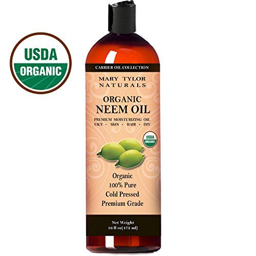 USDA Certified Organic Organic Neem Oil 16 oz  Premium Grade Cold Pressed 100% Pure Great for Hair Skin and DIY Projects Note: Neem oil has a characteristically strong earthy smell. Neem oil can ...